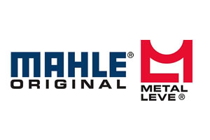 Mahle Metal Leve S/A.